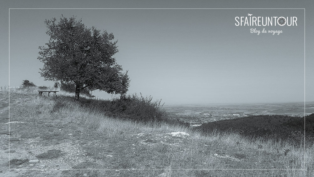 Assénovgrad campagne