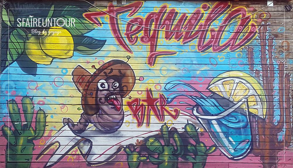 grafiti veliko tarnovo