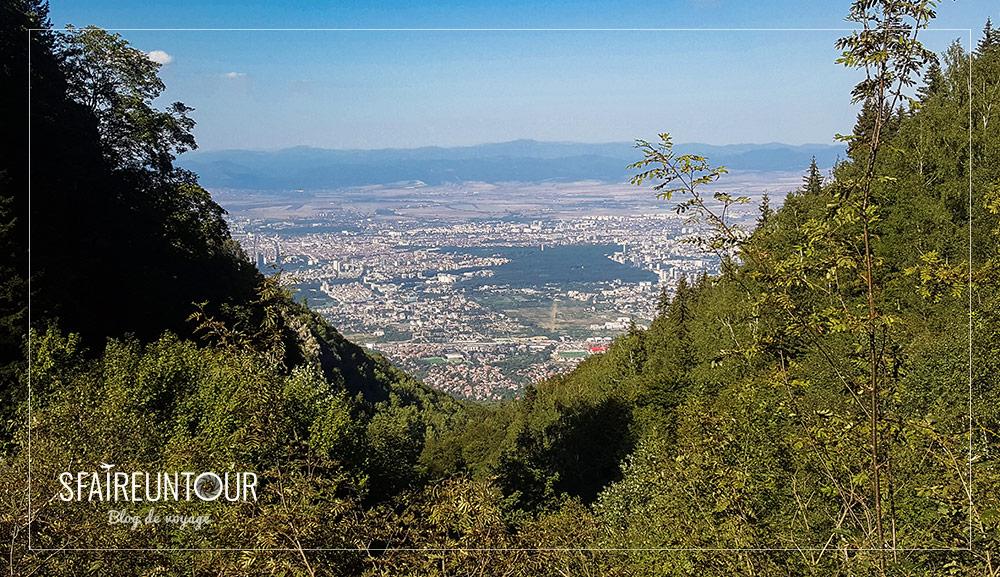 forêt Vitosha 5