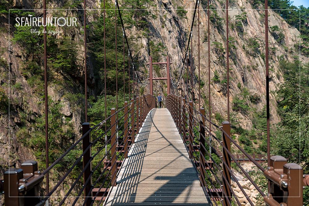 Pont de Biryong 1