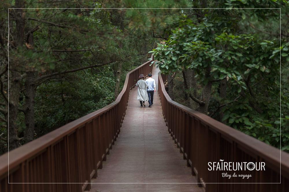 Pont de bois de Suncheon bay